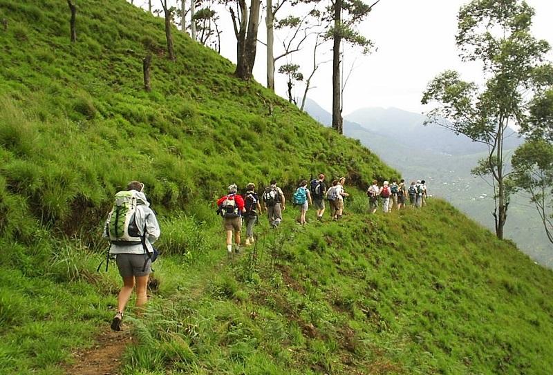 trekking_and_hiking_new2